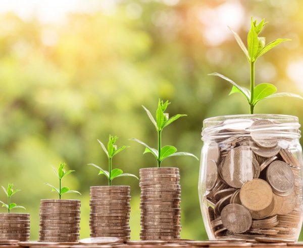 Risparmio e polizze assicurative tra protezione e investimento: quali scegliere